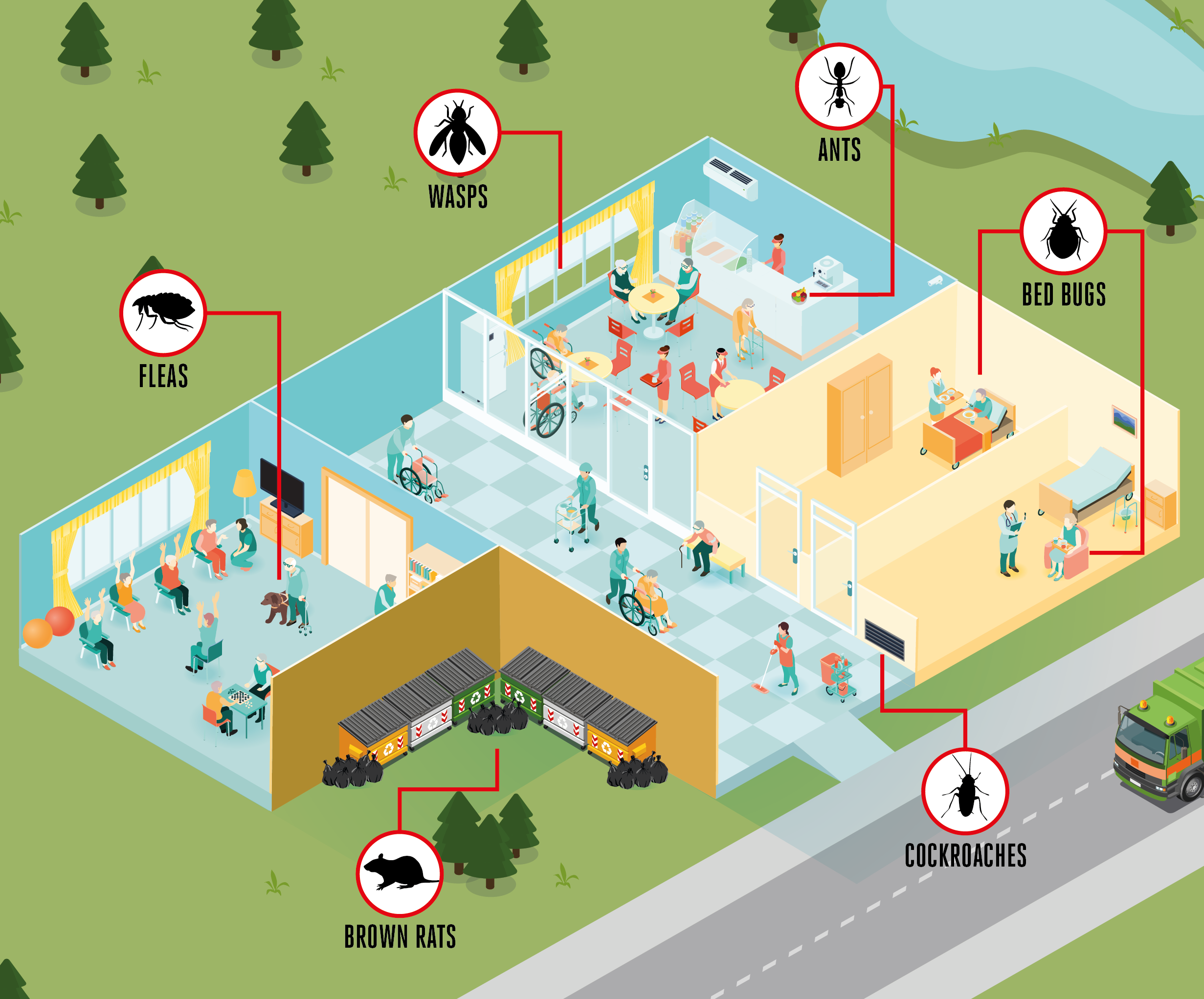 Pest Control in care homes infographic