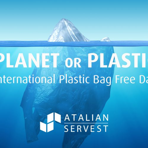International Plastic Free Day